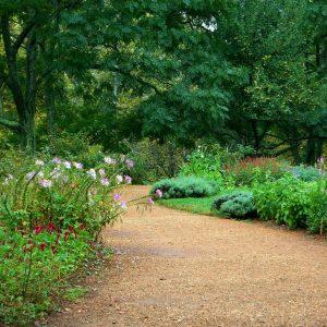garden-path-59151_1920